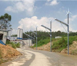 50W Solar Wind off Grid Lithium Battery Storage Energy Garden Lighting System