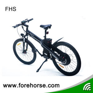 Mountain E-Bike with Hub Motor 36V/250W Electric Bicycle pictures & photos