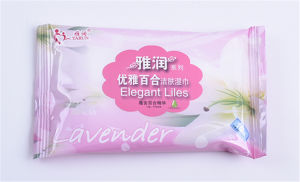 Hot Sell Baby Wipes Manufacturer pictures & photos