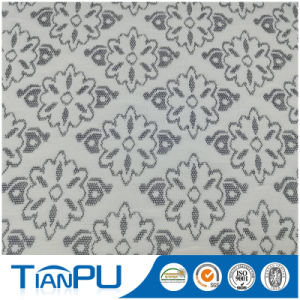 180-550GSM Customized Jacquard Logo Available Fire Retarded (other treatment available) Mattress Ticking Fabric Tp219 pictures & photos