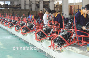A7-17g Big Power 250cc Gy6 Engine ATV Quad pictures & photos