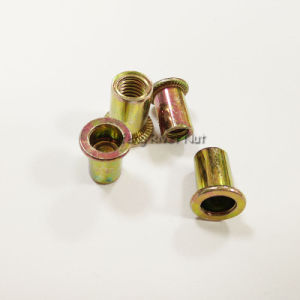 Pan Head Round Body Rivet Nut pictures & photos