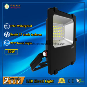 Philips LEDs 30W IP65 Outdoor LED Flood Light with 3 Years Warranty pictures & photos