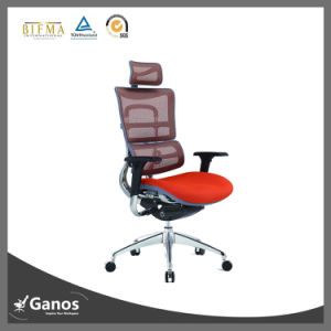 Luxury High Quality Ergo Mesh Chair pictures & photos