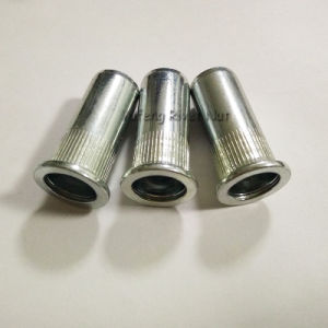 M8 Pan Head Long Rivet Nut with Knurled Body pictures & photos