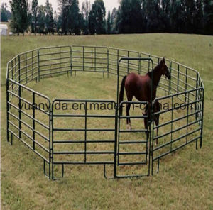 Hot Galvanized Horse Feeding Panel Fence pictures & photos