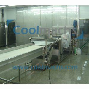 Fish Scallop IQF Spiral Quick Freezer Machine pictures & photos