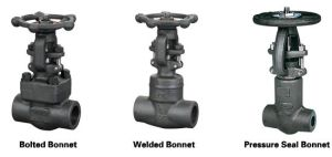 . Y-Type A105 Forged Steel Gate Valve
