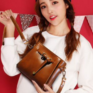 2017 New Women′s Handbag Fashion and Trend (4520) pictures & photos