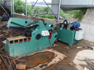 630 Hydraulic Scrap Metal Shear pictures & photos