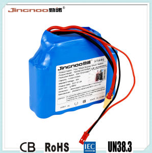 Jingnoo High Rate Lithium Battery Pack, 25V, 4400mAh pictures & photos