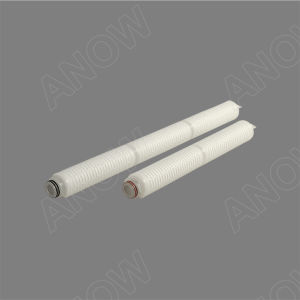 All Fluoropolymer 0.2um PTFE Filter Cartridge for Oxidized Water in Bottled Water pictures & photos
