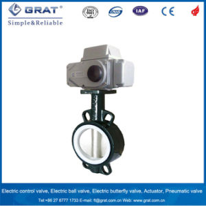 PTFE Coated Cast Iron Electric Butterfly Valve pictures & photos