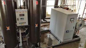 Longevity Ozone Generator Built-in Psa Oxygen Generator pictures & photos