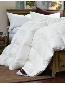 Purple Color 233 Tc Cover White Goose Down Filling Comforter in Queen Size pictures & photos