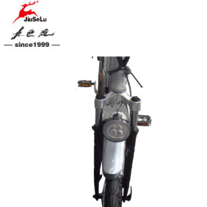 "CE 26"" 36V Lithium Battery 250W Brushless Motor Ebike (JSL038XD-3) pictures & photos"
