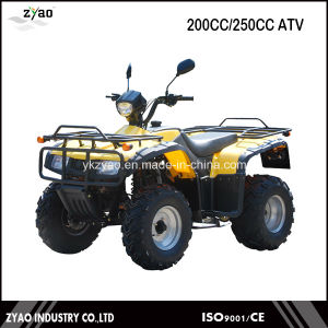 Road Quad Bike Loncin 200cc/250cc ATV Parts Street ATV pictures & photos