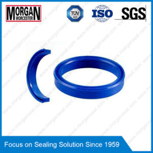 Uhs Type Piston/Rod Use Symmetric Hydraulic Seals pictures & photos