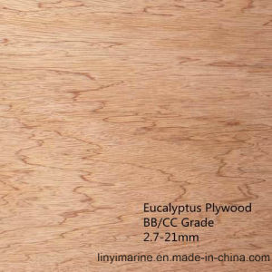 Eucalyptus Plywood for Decoration 2.7-21mm BB/CC pictures & photos