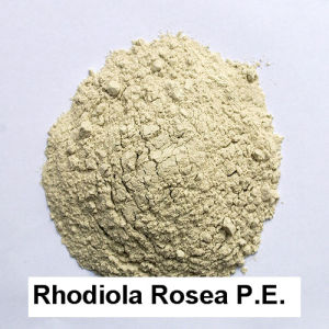 3% USP Rhodiola Rosea P. E. Powder Performance Enhancers Protecting Cardiovascular System Antioxidants pictures & photos