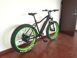 Hot Sales Wide Tire Snow Bike Beach Bike Electric Bike Bicycle pictures & photos