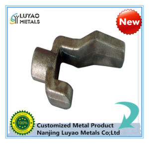 Stainless Steel Hot Forging for Non-Standard Design pictures & photos