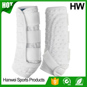 Confortable Tendon Boots Horse Boots pictures & photos