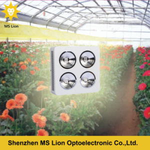 High Energy-Efficiency Powerful COB LED Grow Light 800W pictures & photos