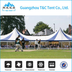 China Supplier Fireproof Windproof Waterproof Tent, Cheap Wedding Party Tents pictures & photos