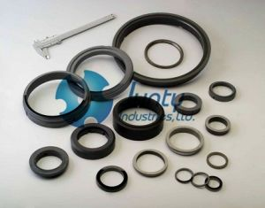 Customized High Quality Silicon Carbide Seal Ring pictures & photos