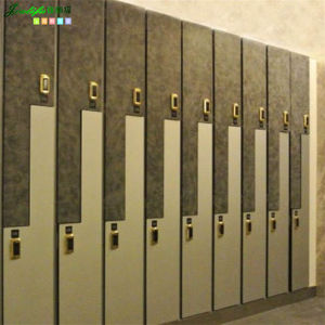 Jialifu 2014 New Design Fireproof Safe Locker pictures & photos