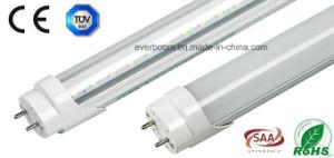 Oval T8 LED Tube Lighting 1.2m (EST8F18)