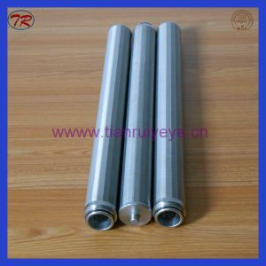 Good Quality 57X592mm Ss 304 Wedge Wire Screen Filter in China pictures & photos