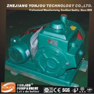 Vane Rotary Vacuum Pump, Vane Vacuum Pump, Small Vacuum Pump, Medical Vacuum System pictures & photos