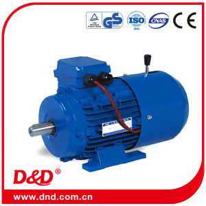 Converter-Fed Electrical/Electric Tefc Induction AC Asynchronous Motor