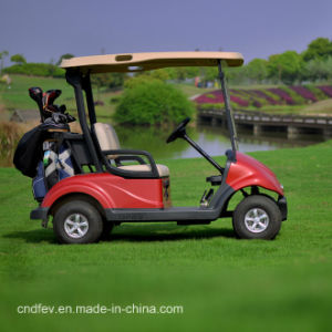 China Best Golf Cart Made by Dongfeng Motor pictures & photos
