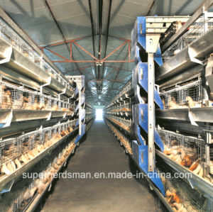 Automatic Poultry Cage Farm for Broiler and Layers pictures & photos