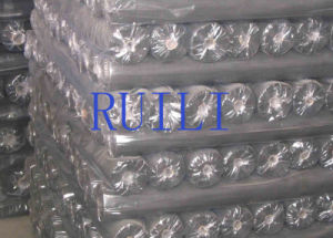 High Quality Cheap Price 110G/M2 Fiberglass Insect Screen pictures & photos