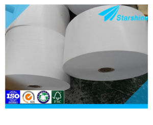 Food Grade Light Weight PE Coated Paper