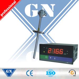 Digital Temperature Indicator pictures & photos