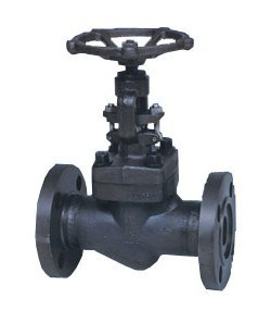 Forged Steel Flanged Globe Valve (J41H-150LB) pictures & photos