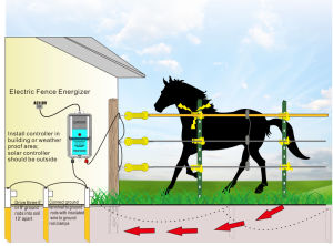 Electric Fence Energizer / Fence Energizer / Fencing for Animals pictures & photos