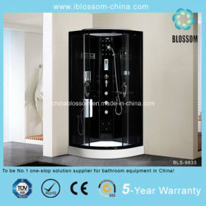 Black Finished Aluminum Frame Steam Complete Shower Room (BLS-9833) pictures & photos