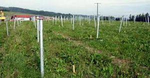 Match Krinner Ground Screw Pile for Vineyard & Orchard pictures & photos