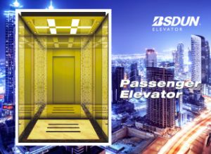 Mrl Passenger Elevator with Luxury Decoration Lift Cabin pictures & photos