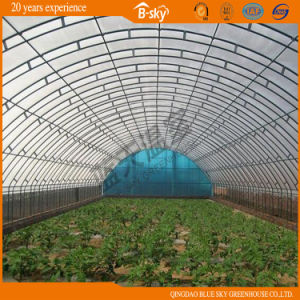 Simple Structure Hoop Type Film Greenhouse pictures & photos