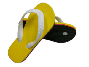 Flip Flops (RS021)