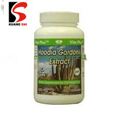 Hoodia Gordonii Cactus Weight Loss Diet Pill pictures & photos