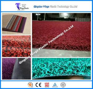 Double Color PVC Coil Car Mat, Car Floor Door Mat pictures & photos