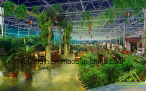 Eco-Sightseeing Greenhouse & Hot Sale Sunhouse pictures & photos